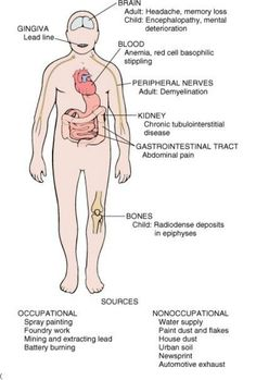 Adult lead poisoning symptoms