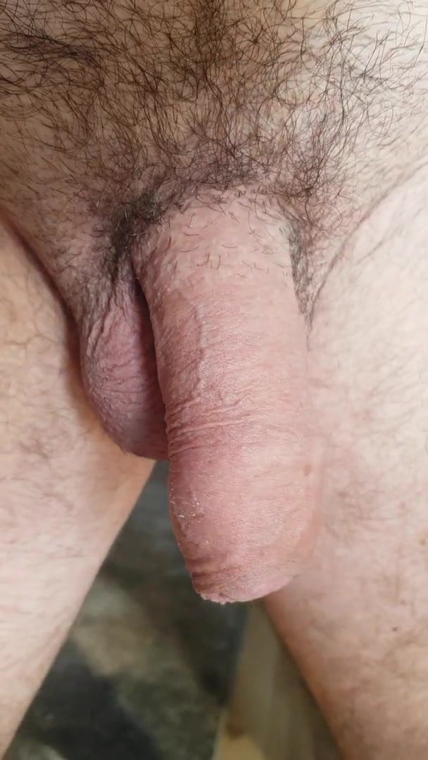 Big limp hairy dicks