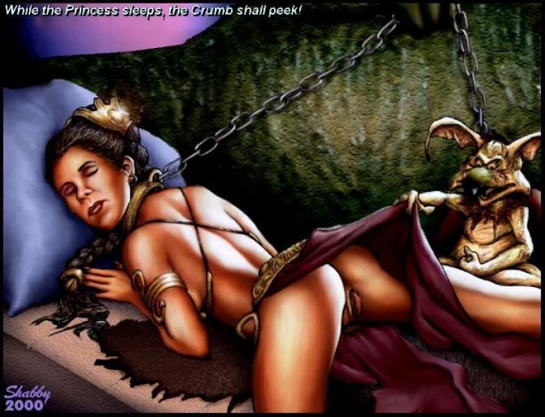 Princess leia animated porn