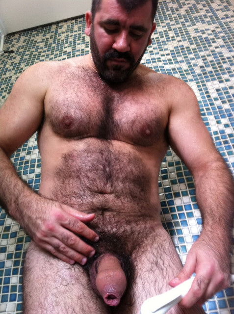 Hairy bear men naked