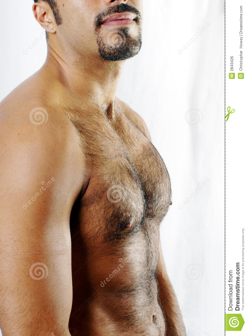 Free muscles hairy chest