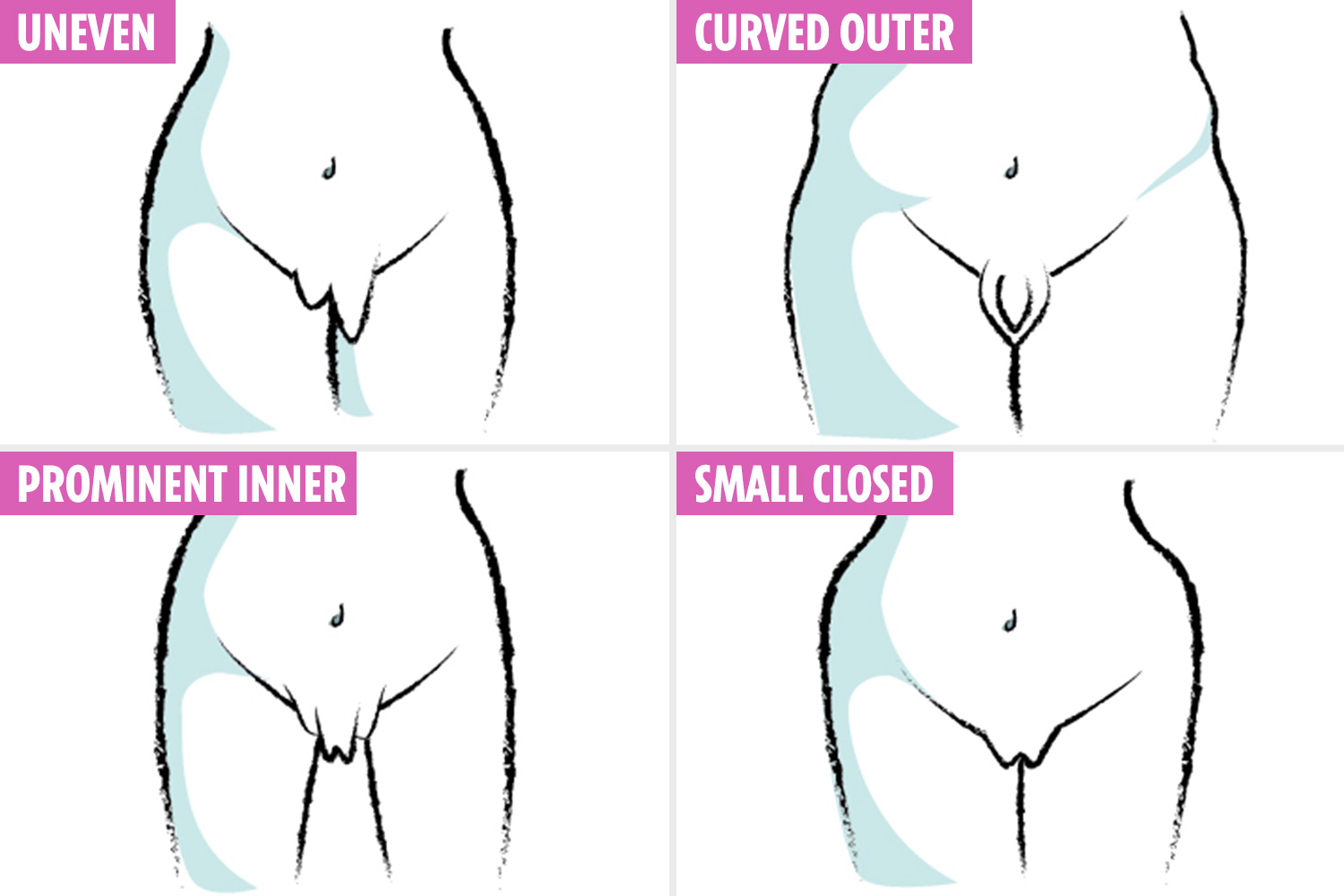Shapes and different sizes of pussy