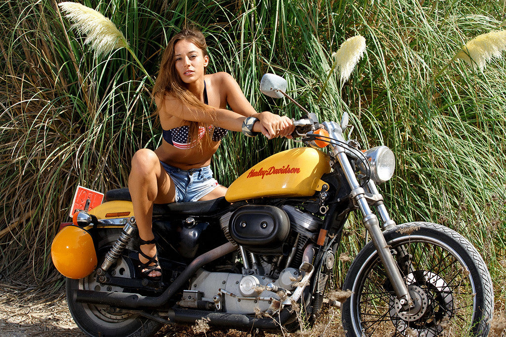 Harley davidson motorcycle and girls