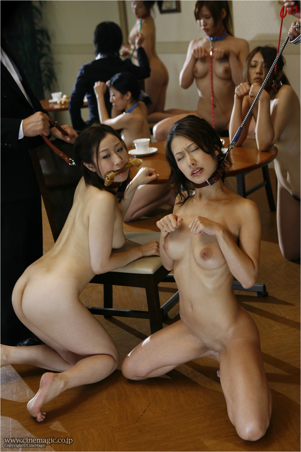Nude asian pet girl