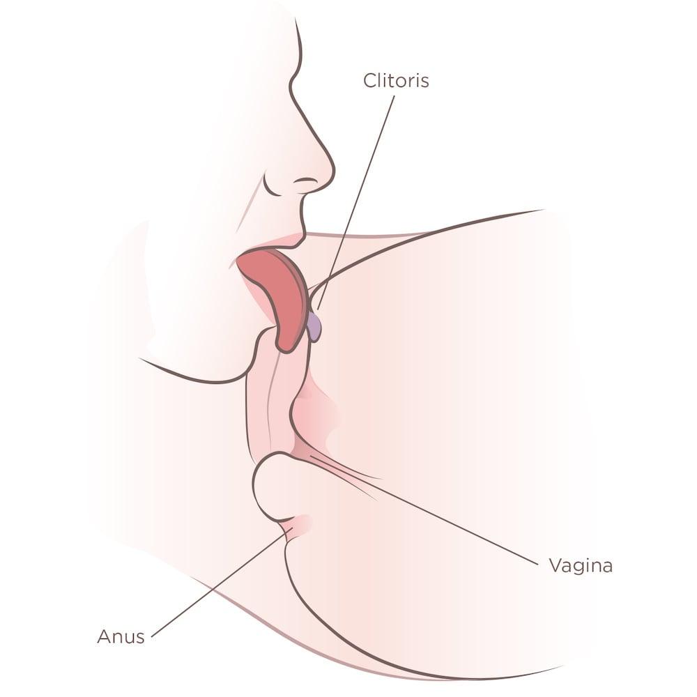 How do you eat a vagina