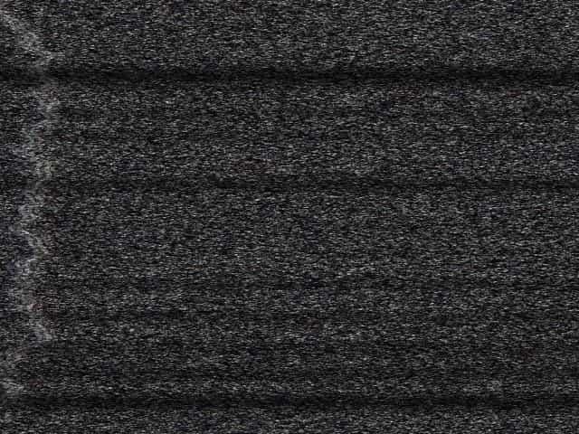 Black curvy ebony hairy