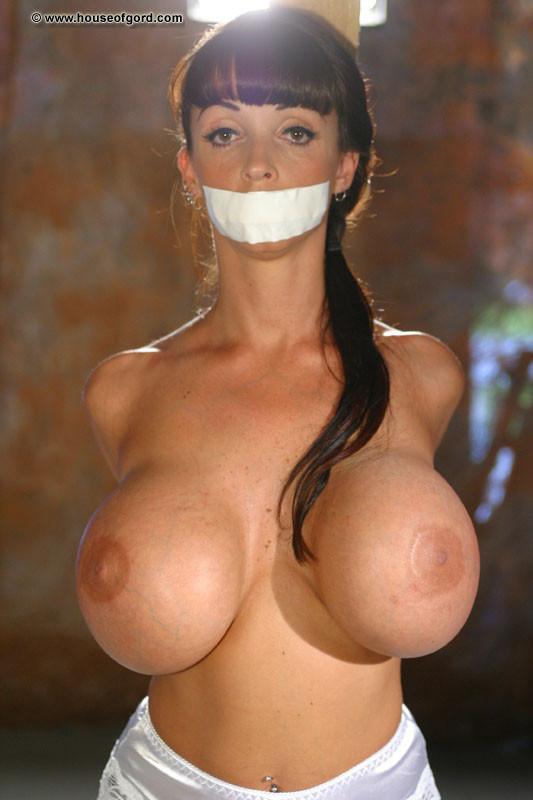 Big round fake tits photos