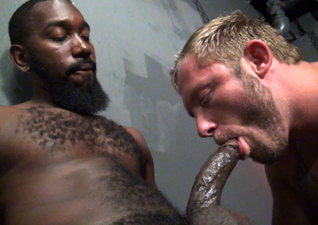 Black hairy big dick