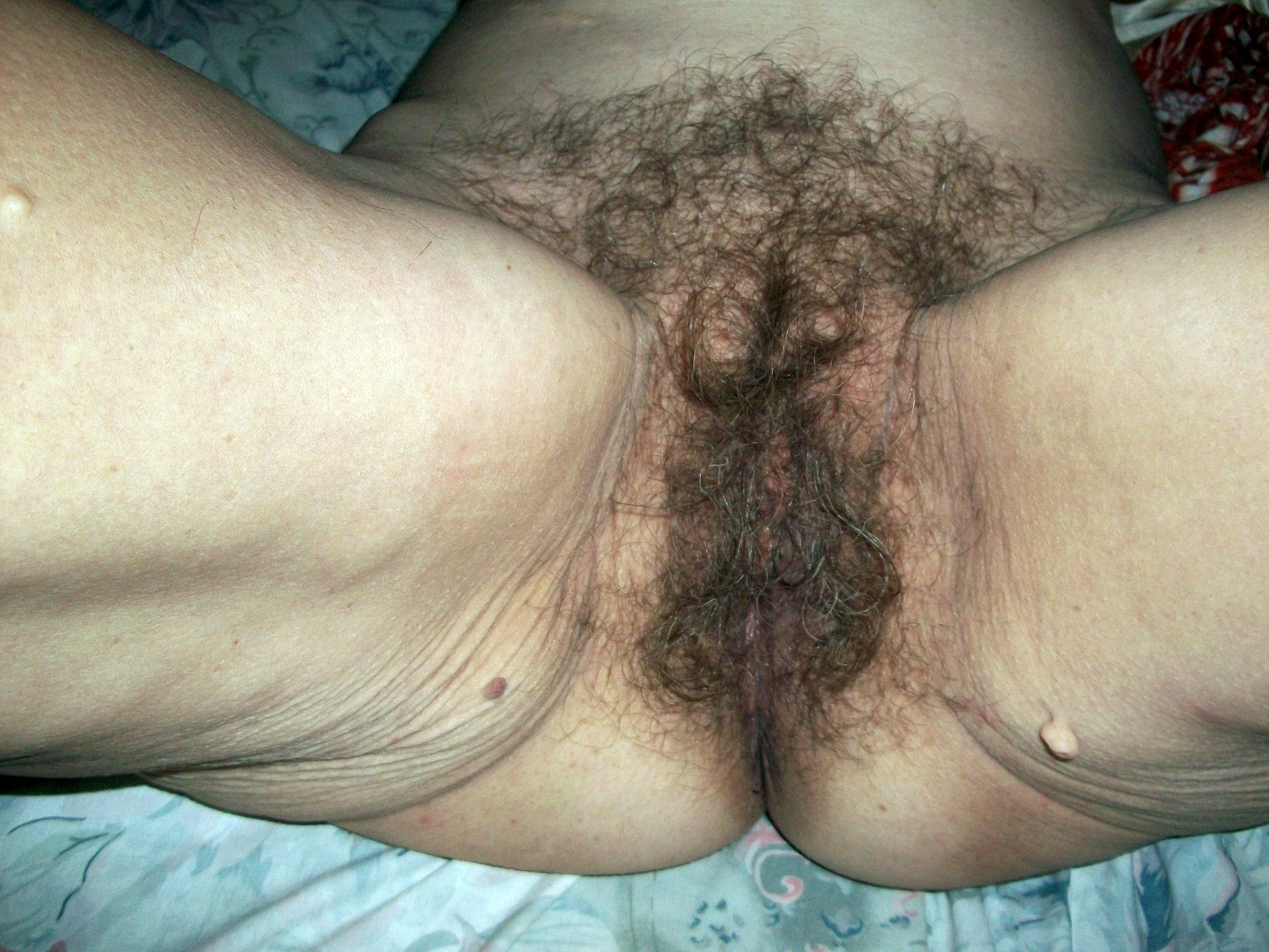 Shaved or unshaved vaginas