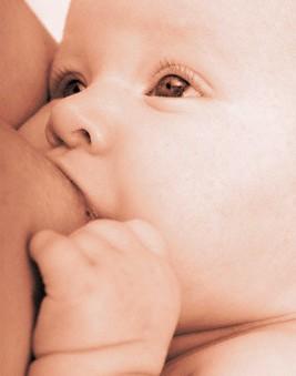Anal etapas oral y