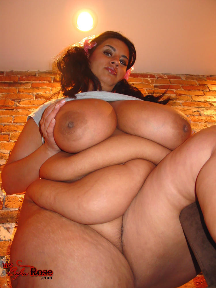 Bbw sofia rose tumblr